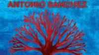 Antonio Sanchez – New Life (Full Album)