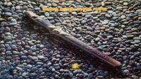 Herbie Mann – Stone Flute (Full Album)